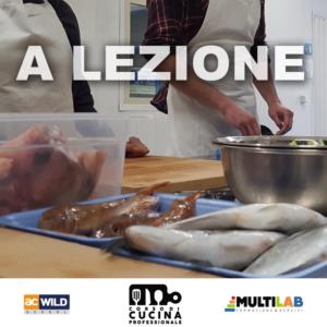 A-LEZION2E